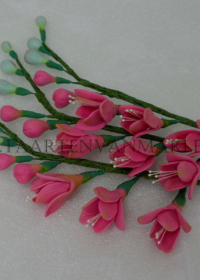 roze fresia`s