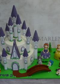 Kasteel taart met prinses Sofia